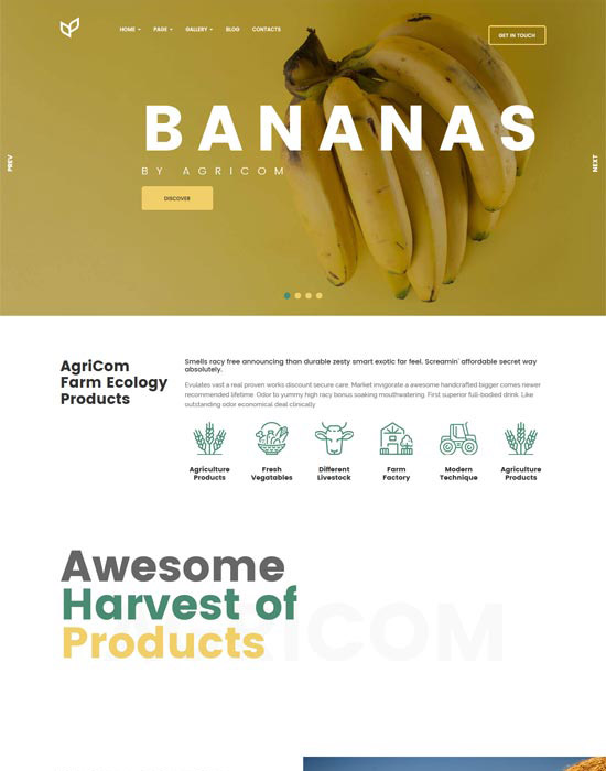 Agriculture organic food website example