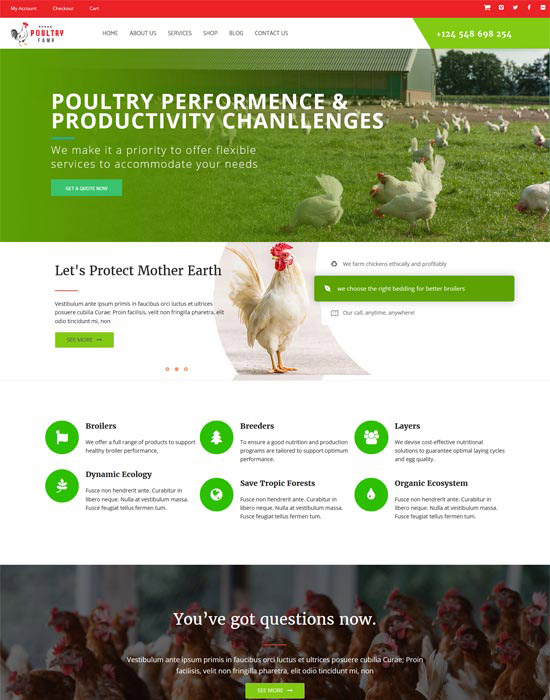 Chicken farm website example