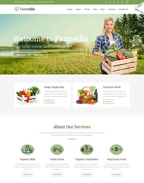 Organic food website example